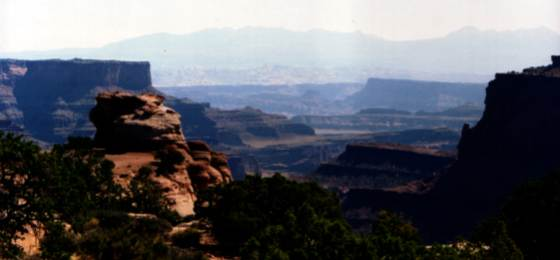 View of Canyonlands, copyrighted by Bizgrok